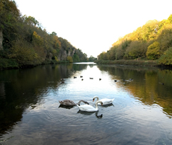 Creswell Crags Museum and Visitor Centre